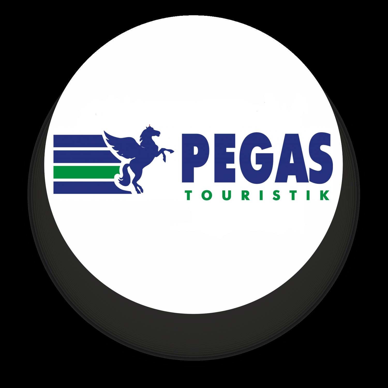 Сайт туристической компании пегас создание сайта города семей
